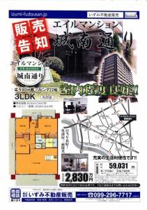 平成29年6月10日広告1